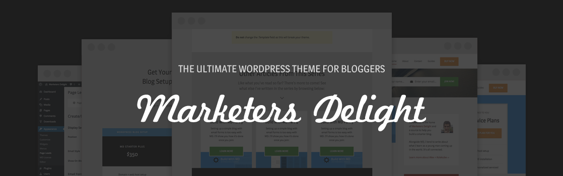 The Ultimate WordPress theme for bloggers