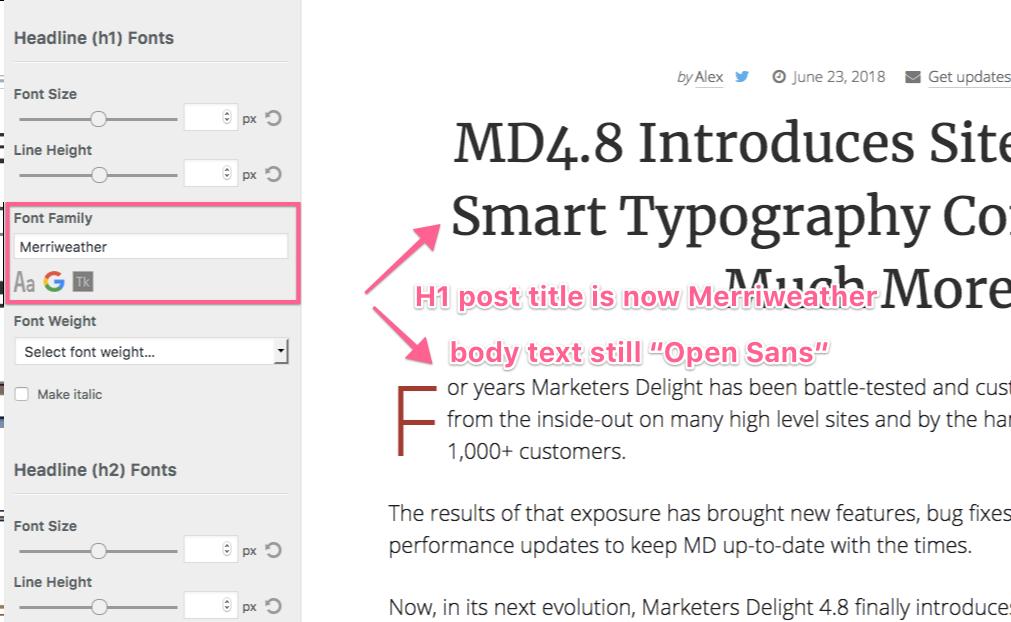 MD Google Fonts Customizer