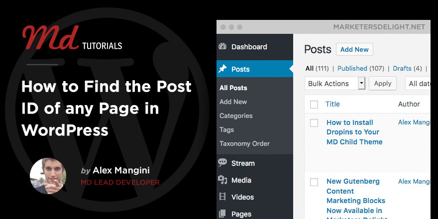 How to get the Post ID in WordPress