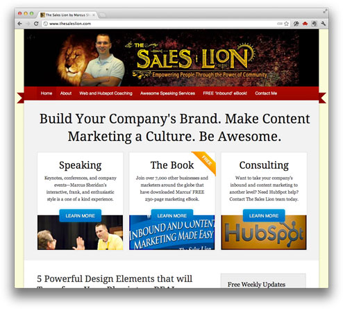The Sales Lion redesign