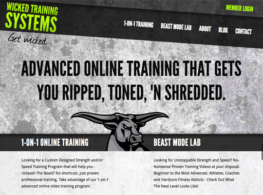 Wicked Training Systems