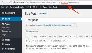 Get WordPress Post ID