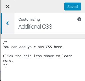Customizer Additional CSS