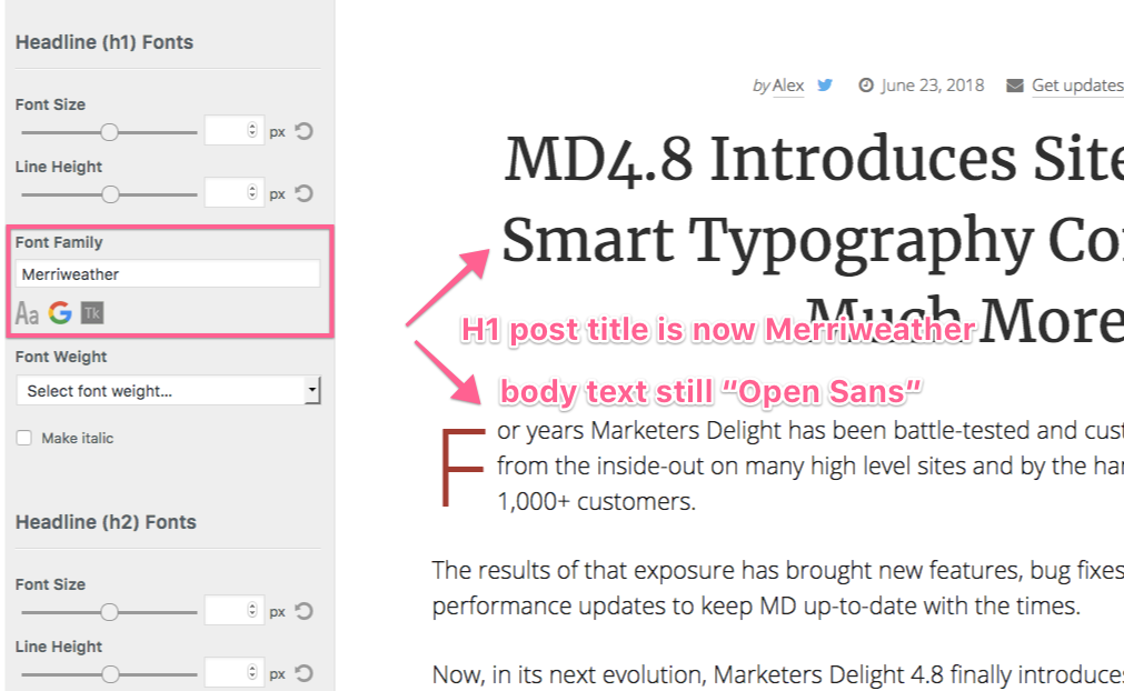 MD Google Fonts Customizer