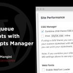 How to Dequeue Custom Plugin Scripts With the MD Scripts Manager (Filter)