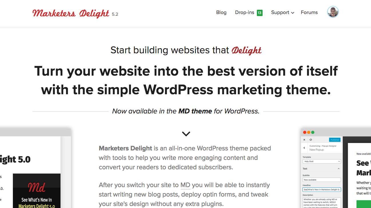 Marketers Delight WordPress Theme