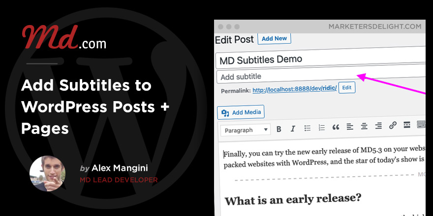 Add Subtitles to WordPress Posts and Pages